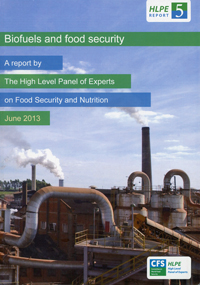 food security rome june 2013 hlpe report 5 biofuels and food security
